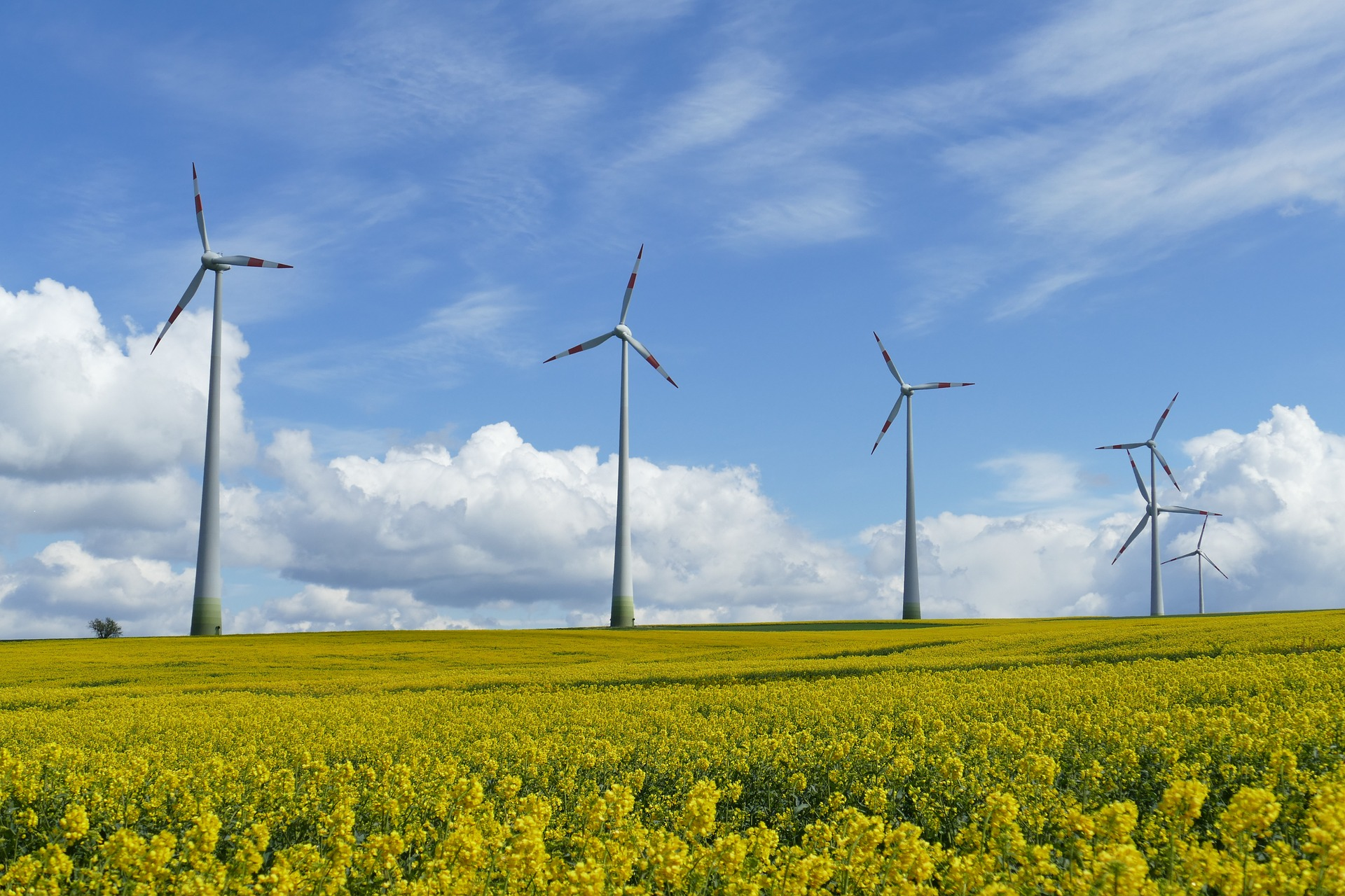 wind-power-1357419_1920
